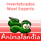 Animalandia Invertebrados Exp