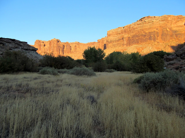 Leaving the Frog and entering Horseshoe Canyon