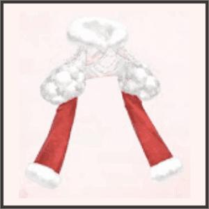 銀雪の外套