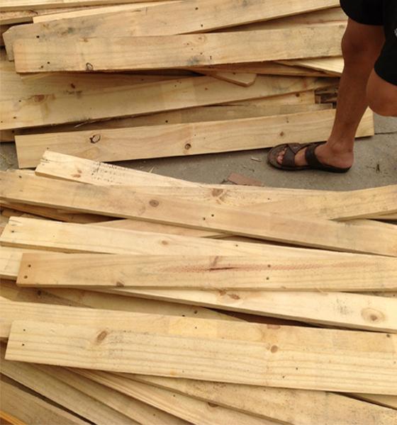 tháo nan pallet từ gỗ thông giá bán 4 nghìn/tấm