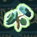 沼地の木の種