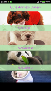 Cute Animals Gallery - náhled