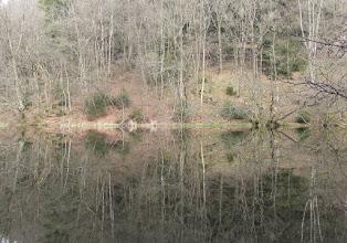 Photo: Het stuwmeer aan de Perlenbach