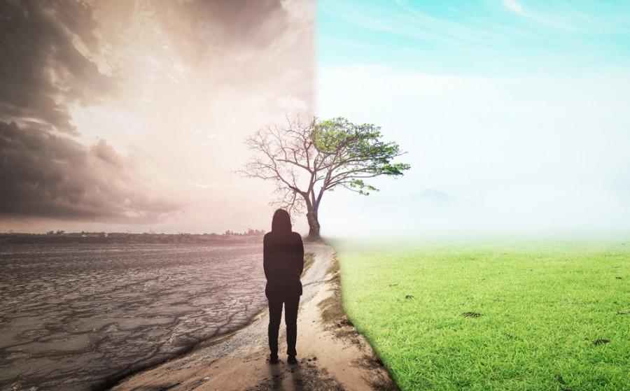 Une femme est face à un paysage de nature. Le paysage est divisé en deux parties. A gauche on peut voir un paysage sombre qui représente le chaos. A droite on peut voir la nature verdoyante.