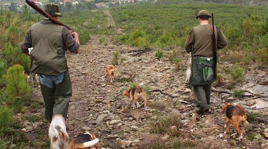 Diez heridos por disparos de armas de caza en Almería en lo que va de año