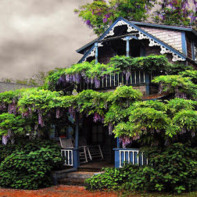 Wisteria House by Karen Tawater - City,  Street & Park  Vistas ( house )