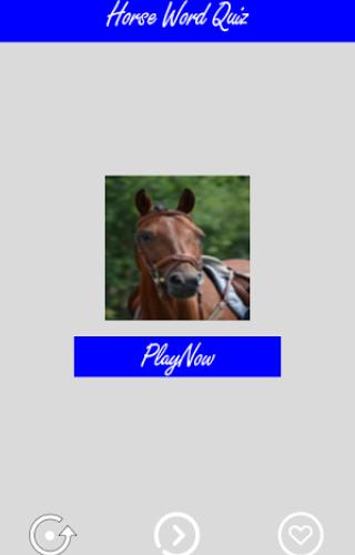Horses Word Game Quiz