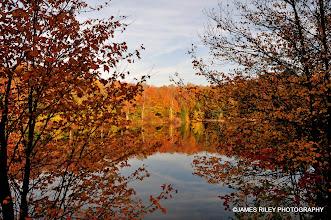 Photo: Route 55 Near Swan Lake in Autumn 001