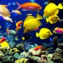Aquarium 3 live wallpaper icon