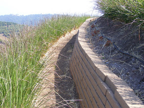 Photo: Detail of path with drylaid adobe wall stabilized by Vetiver. Note on this steep land vetiver acts as a living wall on the downside of the path.