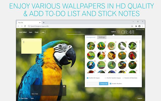 Parrot Wallpaper HD Parrots New Tab