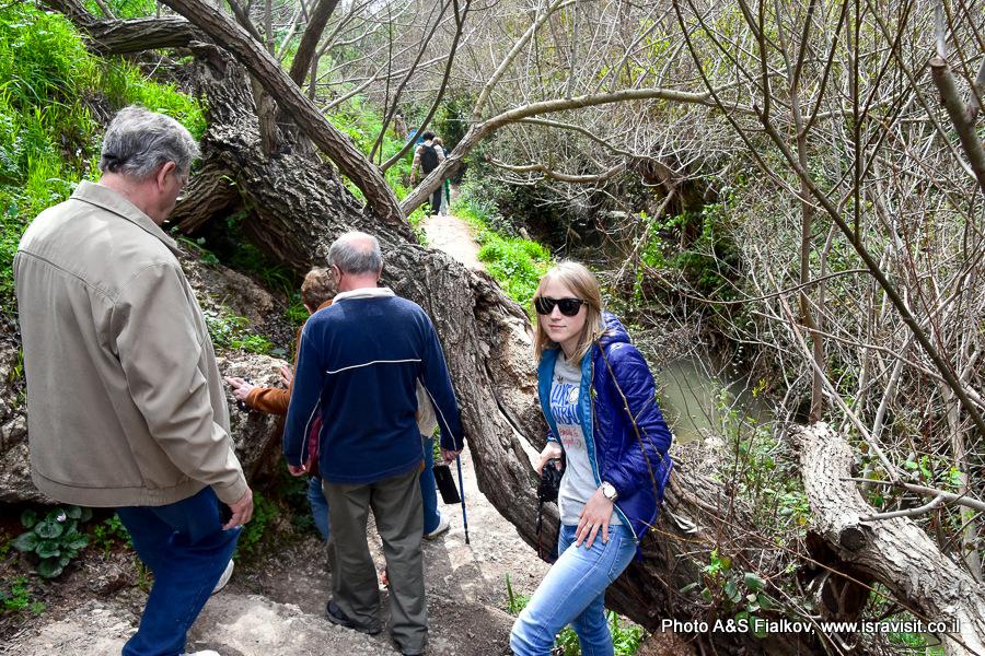 Экскурсия в заповеднике Нахаль Аюн на севере Израиля.