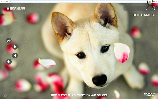 Cute HD Wallpapers New Tab