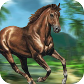 Jungle Horse Run - Animal Hunter