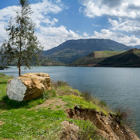 The happiness of the log!!! :) by Stavros Troullinos - Landscapes Prairies, Meadows & Fields ( clouds, grass, blue, green, greece, rethymno, lake, crete, landscape, smile, log, river,  )