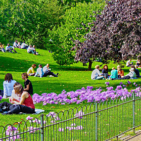 Beautiful day in St. Jamese`s park by Primož Ogorevc - City,  Street & Park  City Parks ( park, relax, flowers )