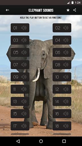 大象声音|玩音樂App免費|玩APPs