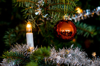 Photo: P52 #53: Christmas