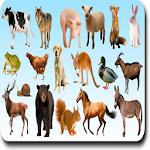 AtoZ Animal Name 1.4