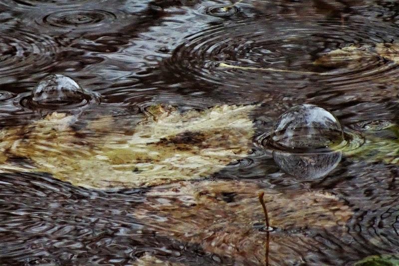 Bolle di acqua di onder1319