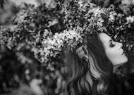 Vestuvių fotografas Aleksandr Aushra (AAstudio). Nuotrauka 22.10.2018