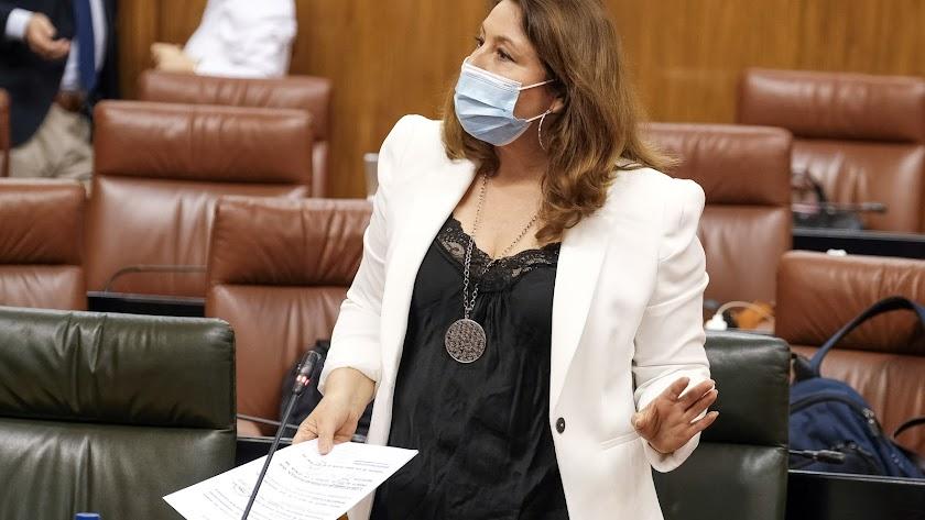 Carmen Crespo en el Parlamento.