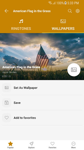 Free Ringtones for Androidu2122  screenshots 11