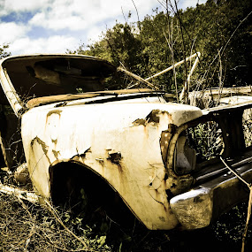 Car by Josiê Calera - Transportation Automobiles ( car, field, old, sky, junkyard )