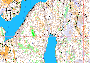 Photo: Salmi recreation area, Karttapullautin map in MapInfo, with coordinate grid lines. Created from the open data of the National Land Survey of Finland