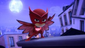 Hey, Hey, Owlette thumbnail