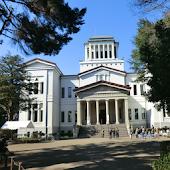 Tải 神奈川県:大倉山公園梅林(JP243) miễn phí