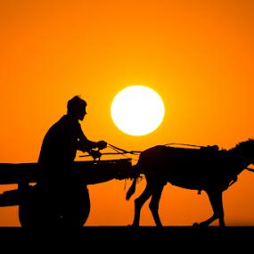 by Awais Mustafa - People Fine Art ( canon eos 60d, silhouette, sunset, sigma 70-200 f2.8, sun )