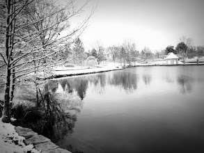 Photo: Black and white photo of snowy trees and a gazebo at Cox Arboretum in Dayton, Ohio.