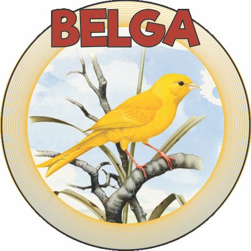 BELGA CANTO CD BAIXAR CANARIO