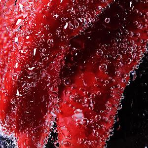 Pixoto chili bubbles 1.jpg