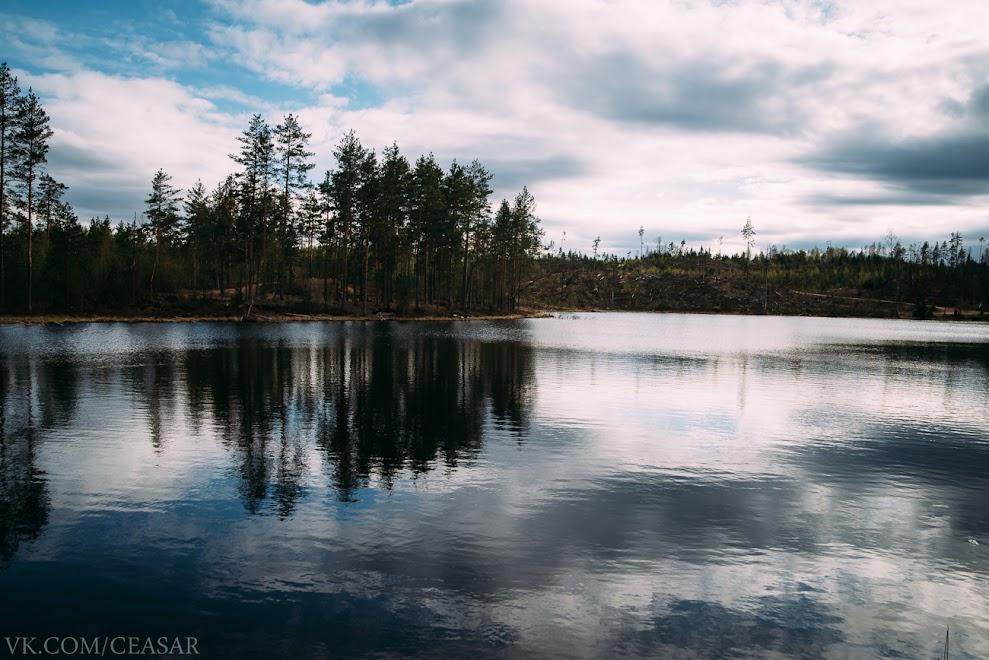 """Озеро """"Забытое"""""""