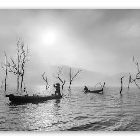 by Kenji Le - News & Events World Events ( water, tree, black and white, fog, boat )