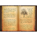 Wicca Magick Book of Shadows icon