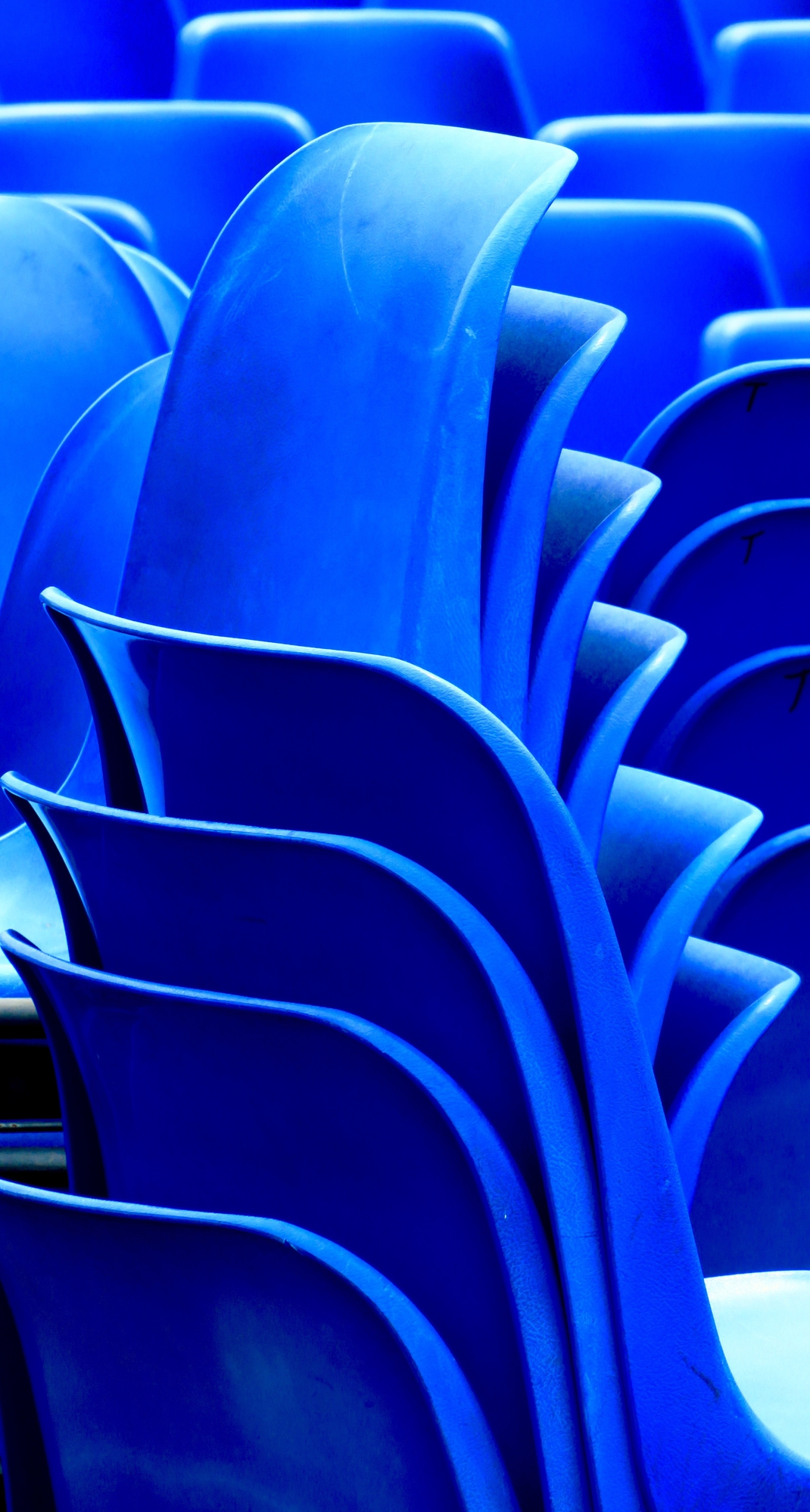 petali di sedie di mariellaturlon