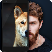 What dog are you Face scanner