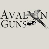 Avalon Guns