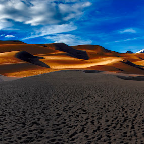 Clouds and Golden Dunes by Sean Markus - Landscapes Deserts ( sand dunes, great sand dunes, national park photography, great sand dunes national park, desert, colorado, national parks,  )