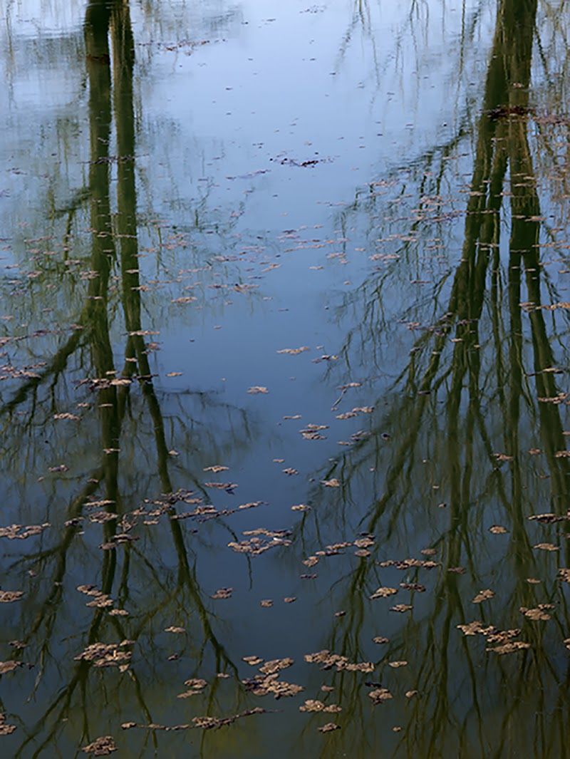 lo specchio dell'acqua di alice_ale