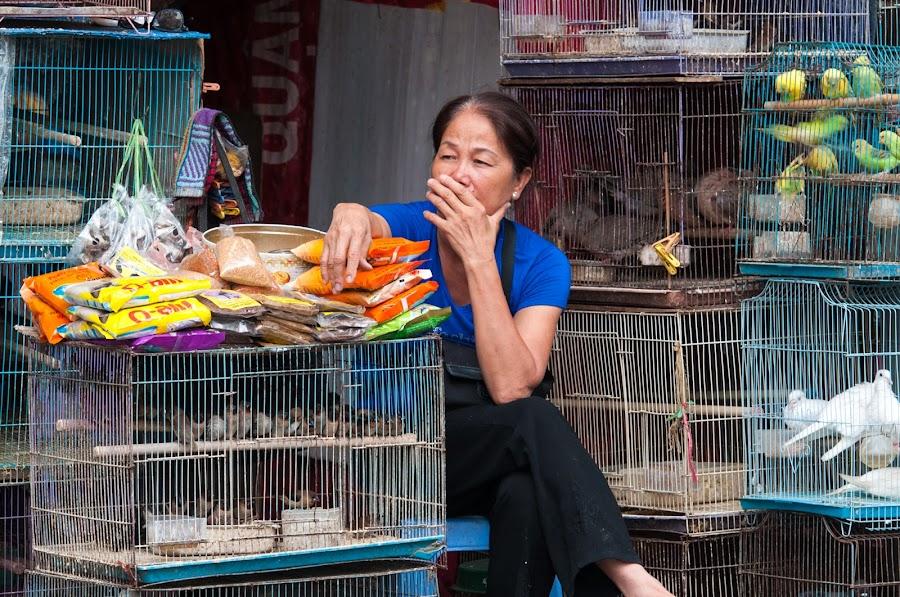 Bird Seller by Cliffie Scott-Williams - City,  Street & Park  Street Scenes