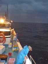 Photo: 寒い、寒い朝です。 なかなか太陽が昇りません。 がんばって釣りましょっ!
