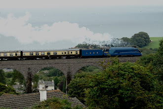 Photo: Torbay Express on the Hookhills Viaduct