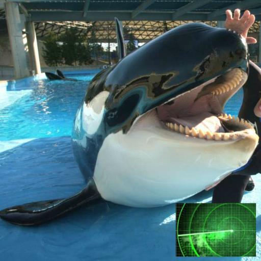 MapCo Guide: SeaWorld, CA