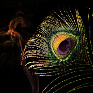 Smoke #8.jpg