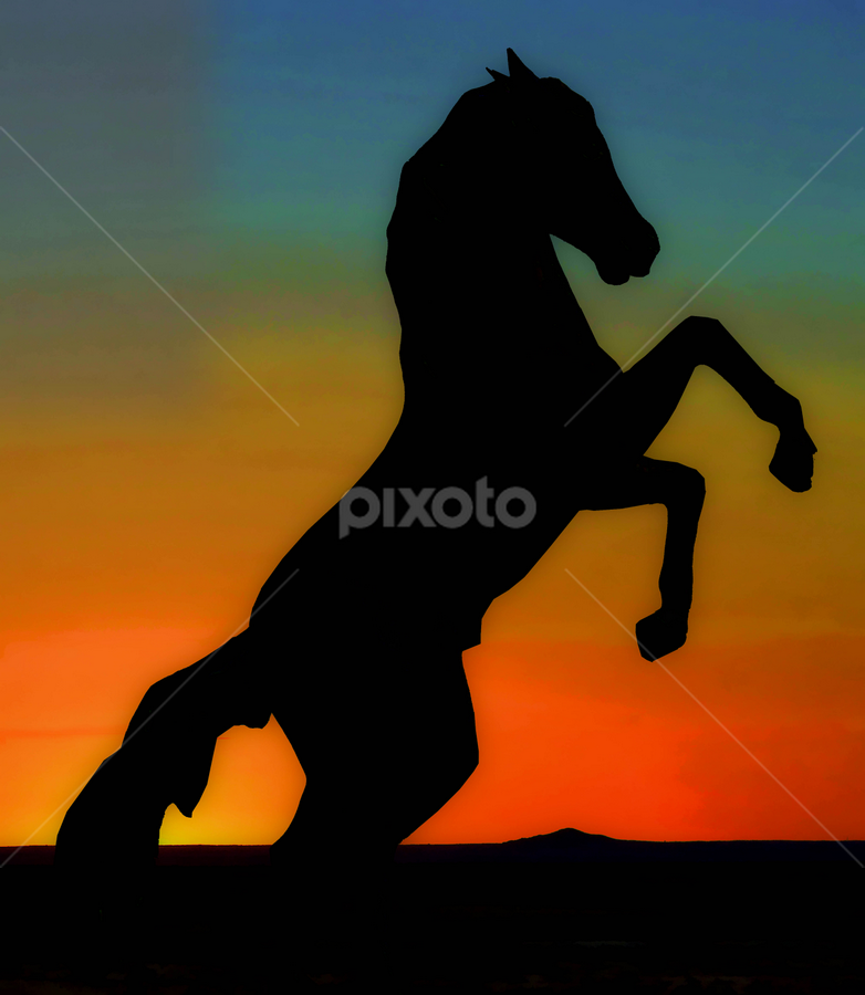 Wild Mustang Stallion Statue at Sunset by Tom Anderson - Buildings & Architecture Statues & Monuments ( july 2013, windslow, mustang stallion statue, sunset, arizona,  )