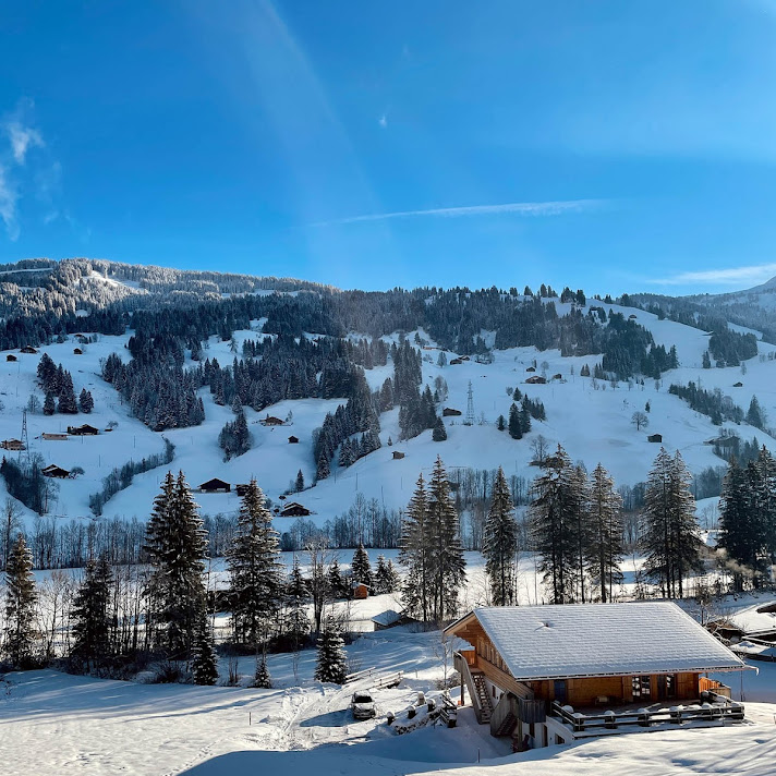 Chalet_Gstaad_27
